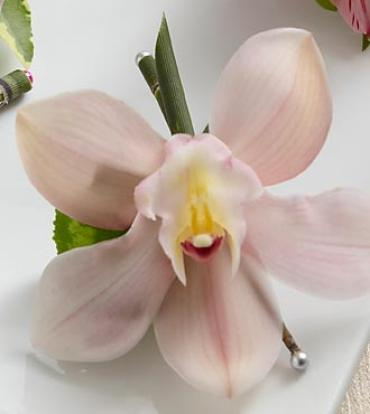 The Pink Cymbidium Boutonniere