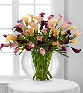 Flawless Luxury Calla Lily Bouquet - 45 Stems