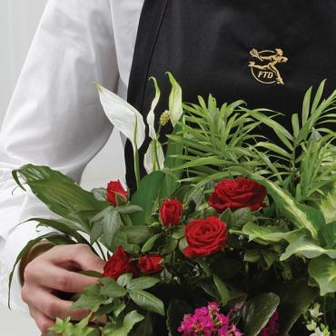 The Florist Designed Blooming and Green Dishgarden